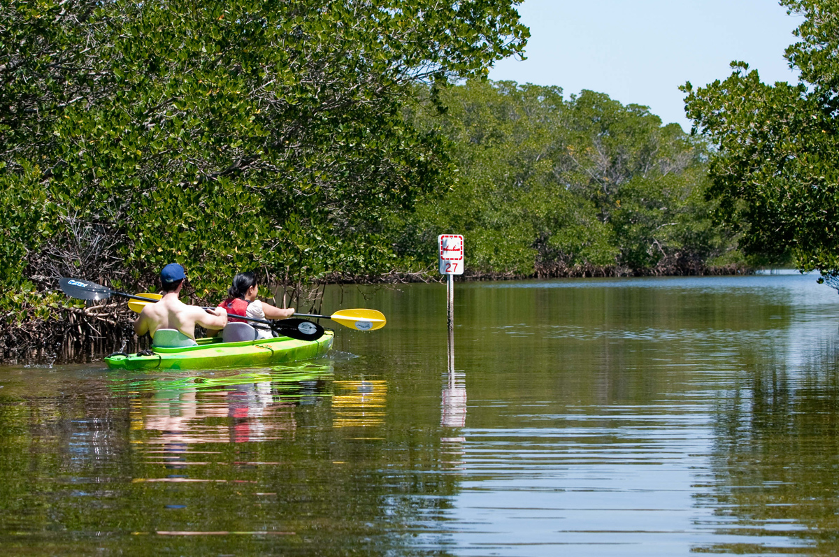 Join Friends of Weedon Island