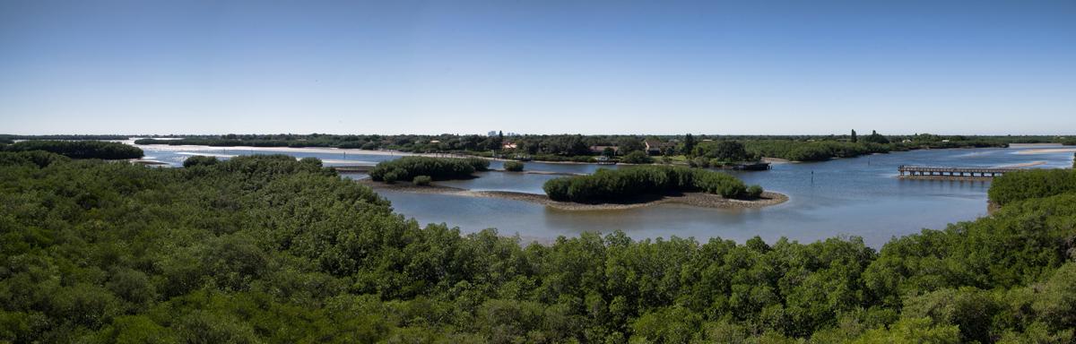 Weedon Island Preserve Scenery